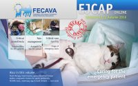 EJCAP Special issue 2016: Caring for the emergency patient