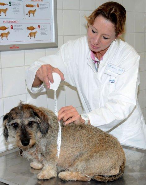 Dr. Petra Kölle untersucht zur Eröffnung der Spezial-Sprechstunde den ersten Patienten