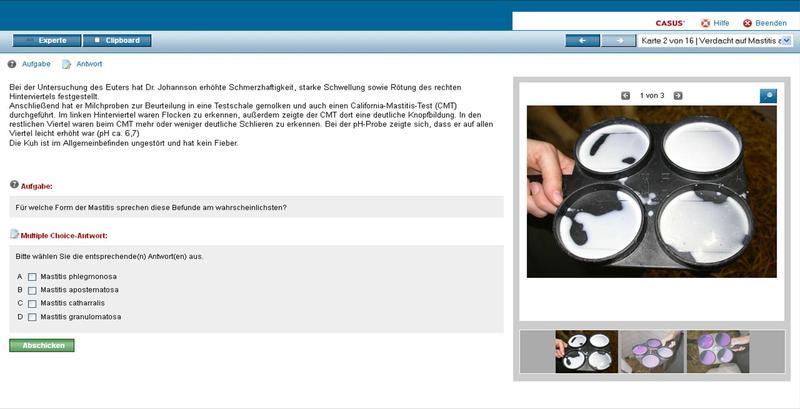 Screenshot eines Lernprogramms: Die Studierenden lösen online in kleinen Schritten einen vorbereiteten Krankheitsfall