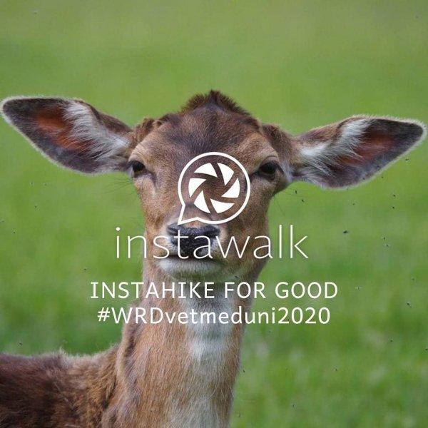 Hashtag #WRDvetmeduni2020
