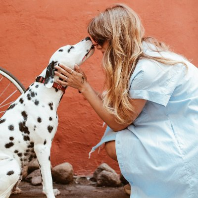 Dog decisions: the position of the people is the key factor; Bildquelle: Daria Shevtsova (Pexels)