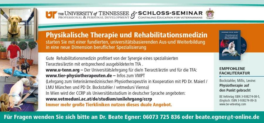 Infos zur Aus- und Weiterbildung in Physiotherapie