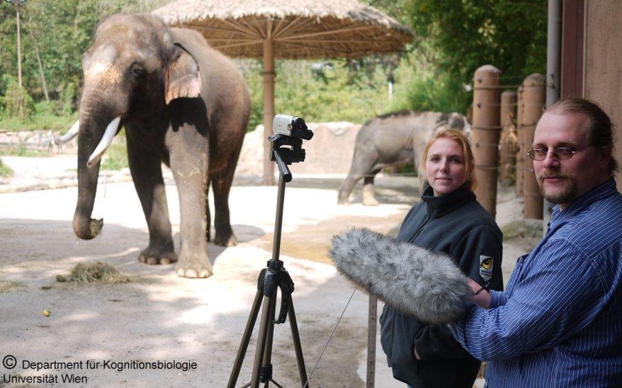 Angela Stöger und Ko-Autor Daniel Mietchen bei ihren Forschungsarbeiten im Everland-Zoo, Südkorea